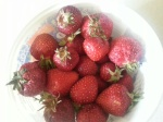 lucys strawberries